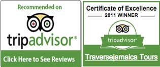 travise-jamaica-tours-recommended-on-tripadvisor