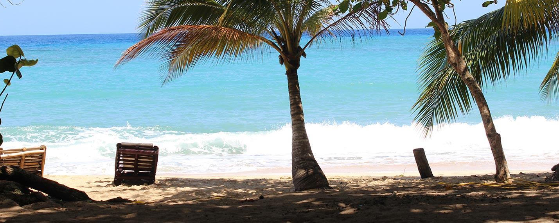 beachbg