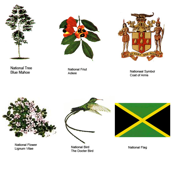 the jamaica s national symbols traverse jamaica. Black Bedroom Furniture Sets. Home Design Ideas