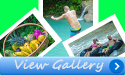 view-gallery-traverse-jamaica-tour